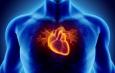 Termin der Herzwochen 2020 –  Das schwache Herz